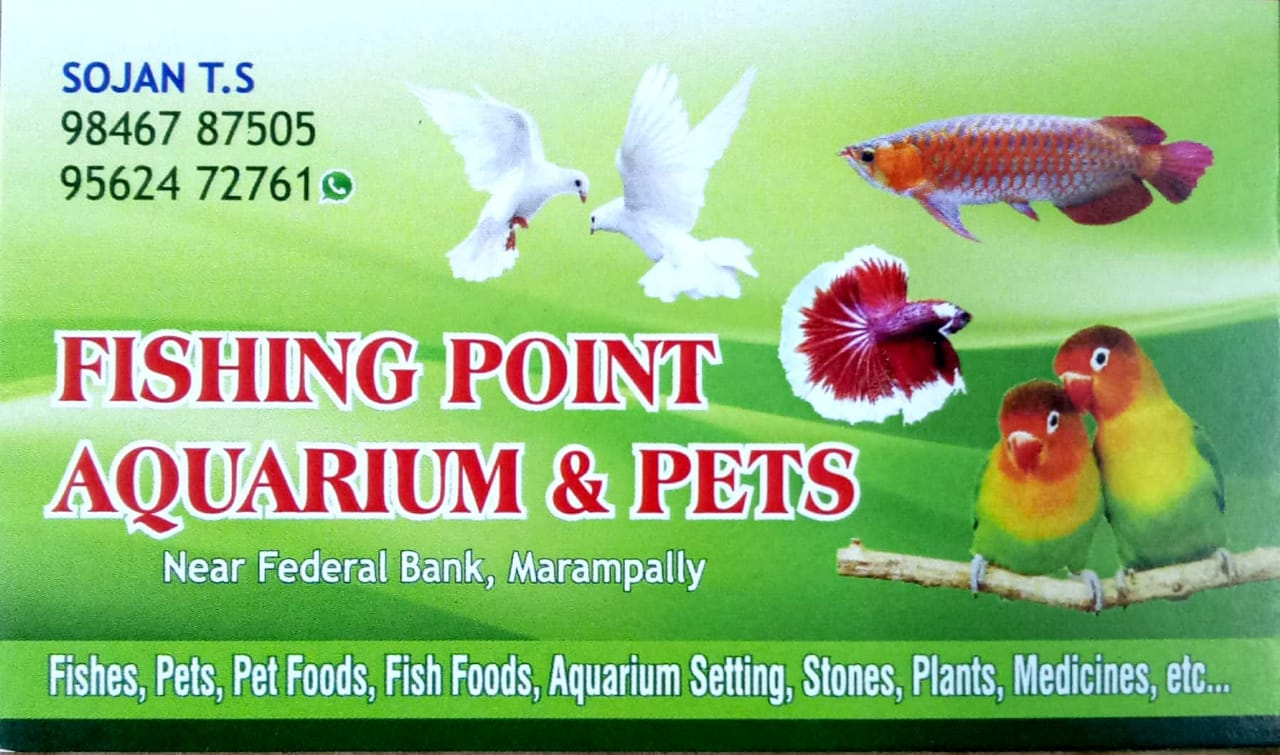 FISHING POINT AQUARIUM AND PETS , ALUVA, PETS & AQUARIUM,  service in Aluva, Ernakulam