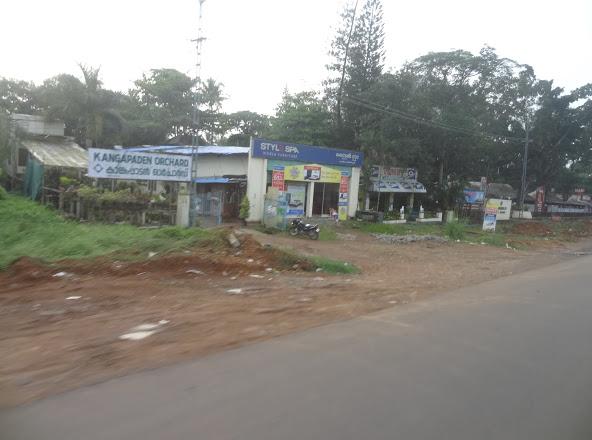 KANGAPPADEN ORCHARD, PLANT NURSERIES,  service in Kodimatha, Kottayam