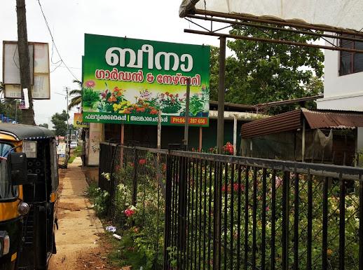 BEENA NURSERY, PLANT NURSERIES,  service in Thellakom, Kottayam