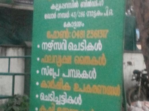 Agro Service Centre, PLANT NURSERIES,  service in Nattakom, Kottayam
