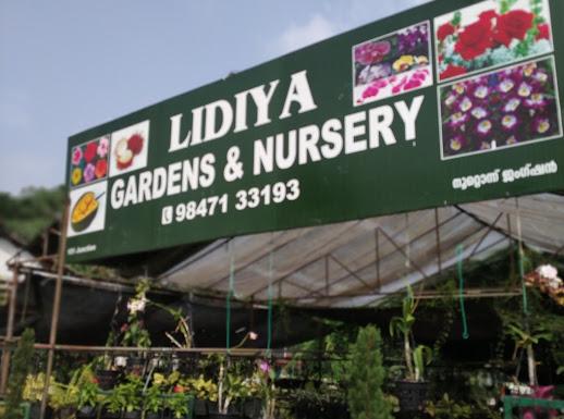 Lidiya Nursery, PLANT NURSERIES,  service in Thellakom, Kottayam