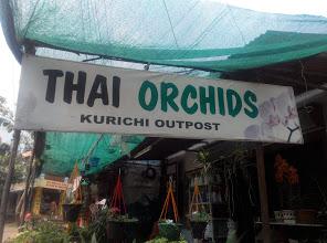 Thai Orchids, GARDEN NURSERY,  service in Kurichy, Kottayam
