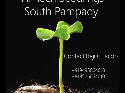 Hi-Tech Seedlings Nursery, PLANT NURSERIES,  service in Pampady, Kottayam