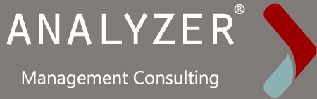 ANALYZER MANAGMENT CONSULTING, CONSULTANCY,  service in Doha, Doha
