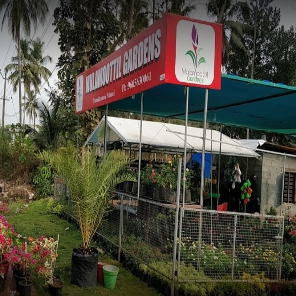 Mulamoottil Gardens, PLANT NURSERIES,  service in Nilamel, Kollam