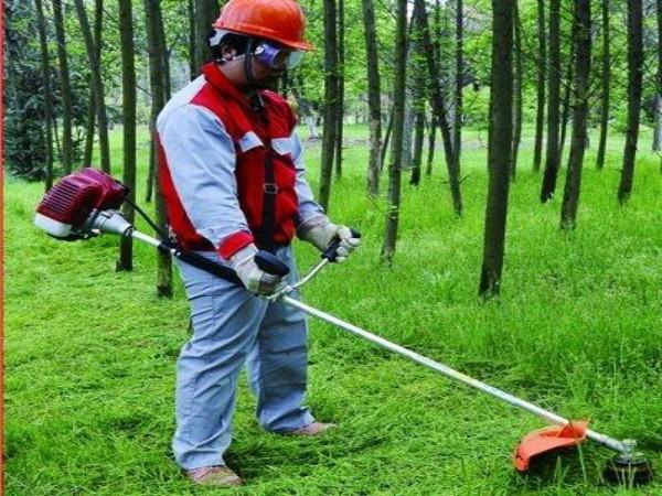 Rahaman, GRASS CUTTING,  service in Changanasserry, Kottayam