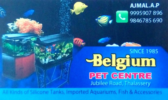 BELGIUM PET CENTRE, PETS & AQUARIUM,  service in Thalassery, Kannur