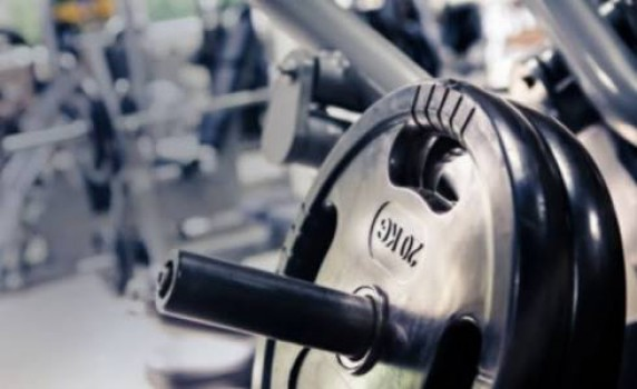 GYM 95, FITNESS, THERAPY  & YOGA,  service in Mukkam, Kozhikode