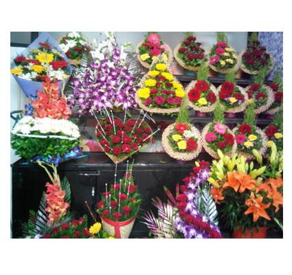 SHOP, FLOWERS SHOP in Kerala