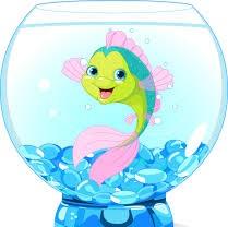 Fishes & Aquarium